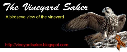 13 - Saker pics or logo