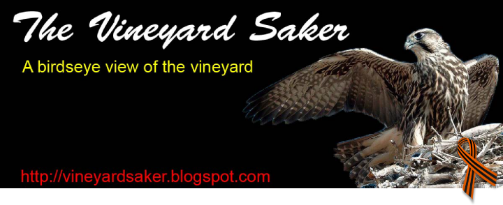 Vineyard of the Saker (The Saker)